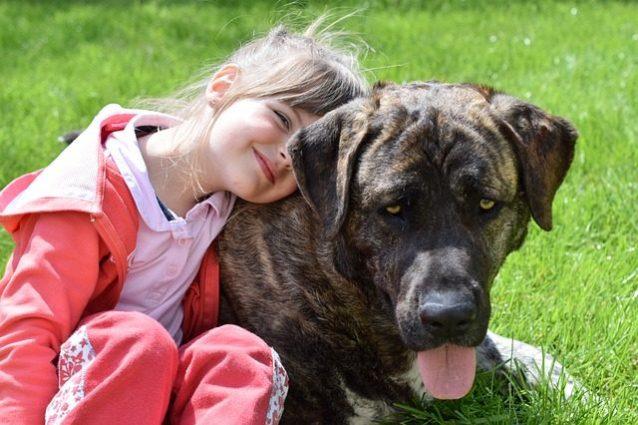 I cani aiutano davvero i bimbi con deficit di attenzione: dimostrato scientificamente